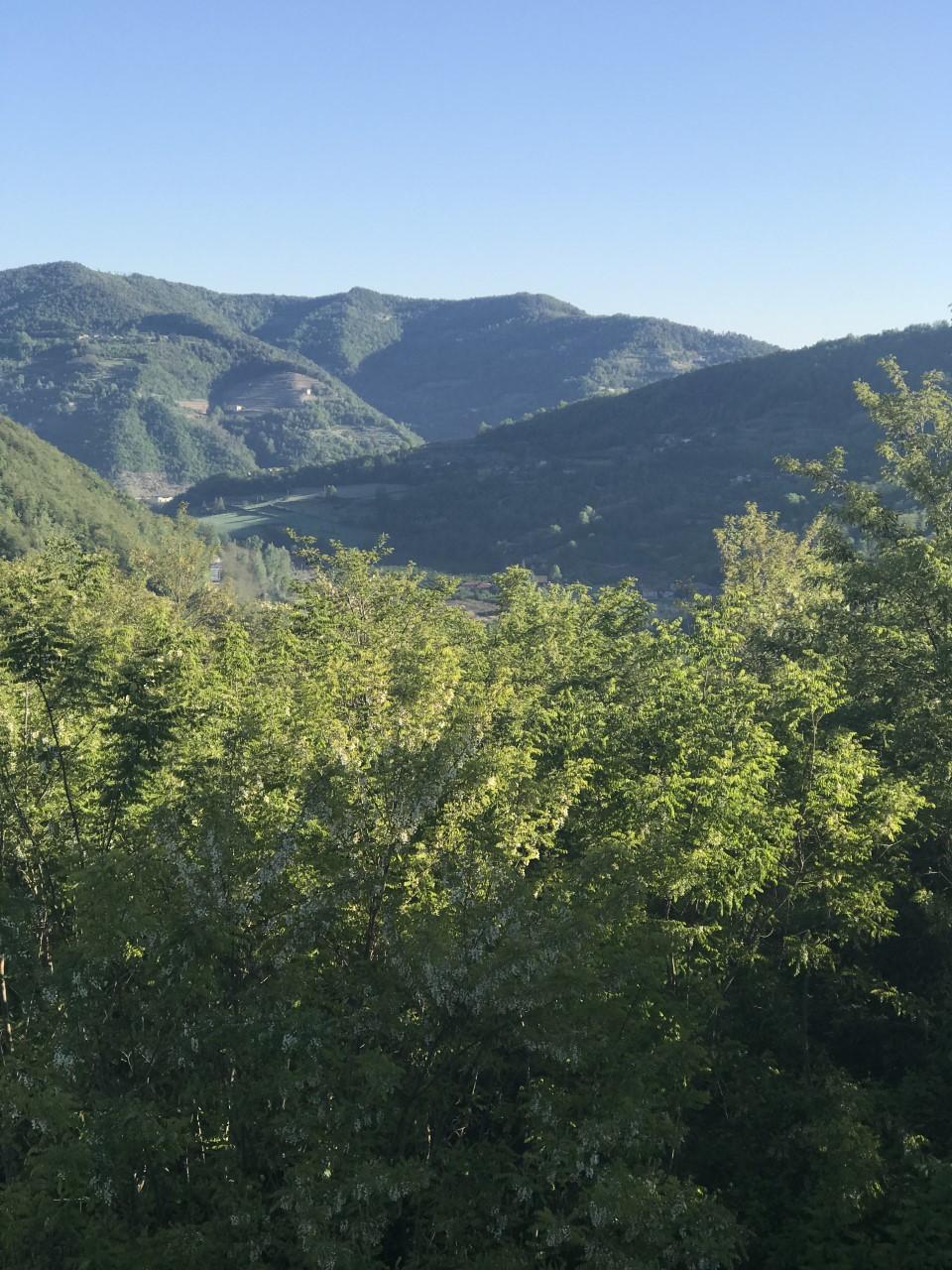 views from villa bergolo