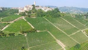 Winery, Italian wine, Italy Travel