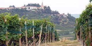 Italian Wine, Italy travel