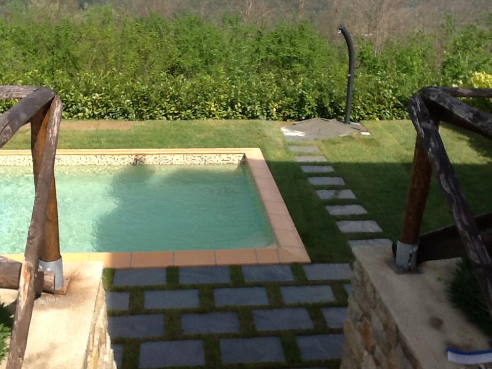 swimming, relaxing, sunbathing,